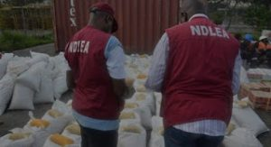 NDLEA arrests 25 drug suspects, seizes 166.95 kg of hard drugs in Adamawa
